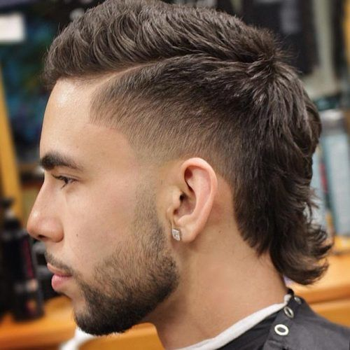 The Mullet Cut